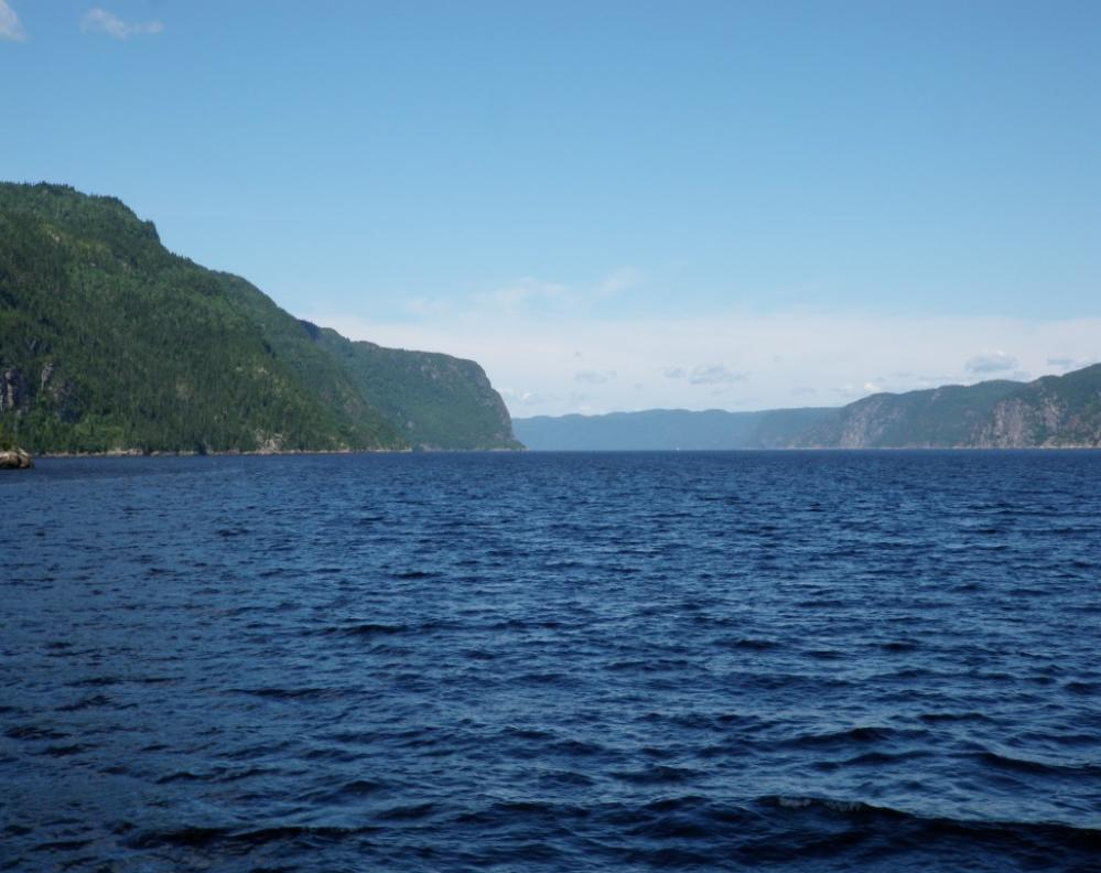 Saguenay Fjord - Where the Blue Whales are!